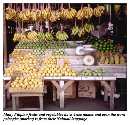 Many Filipino fruits and vegetables have Aztec names